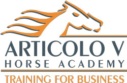 articolo v training for business