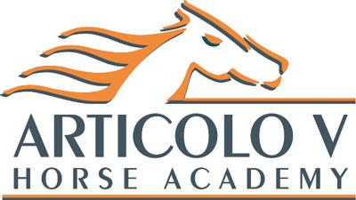 Articolo V Horse Academy