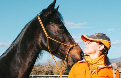 Articolo V Horse Academy sulla rivista Qual Buon Vento !